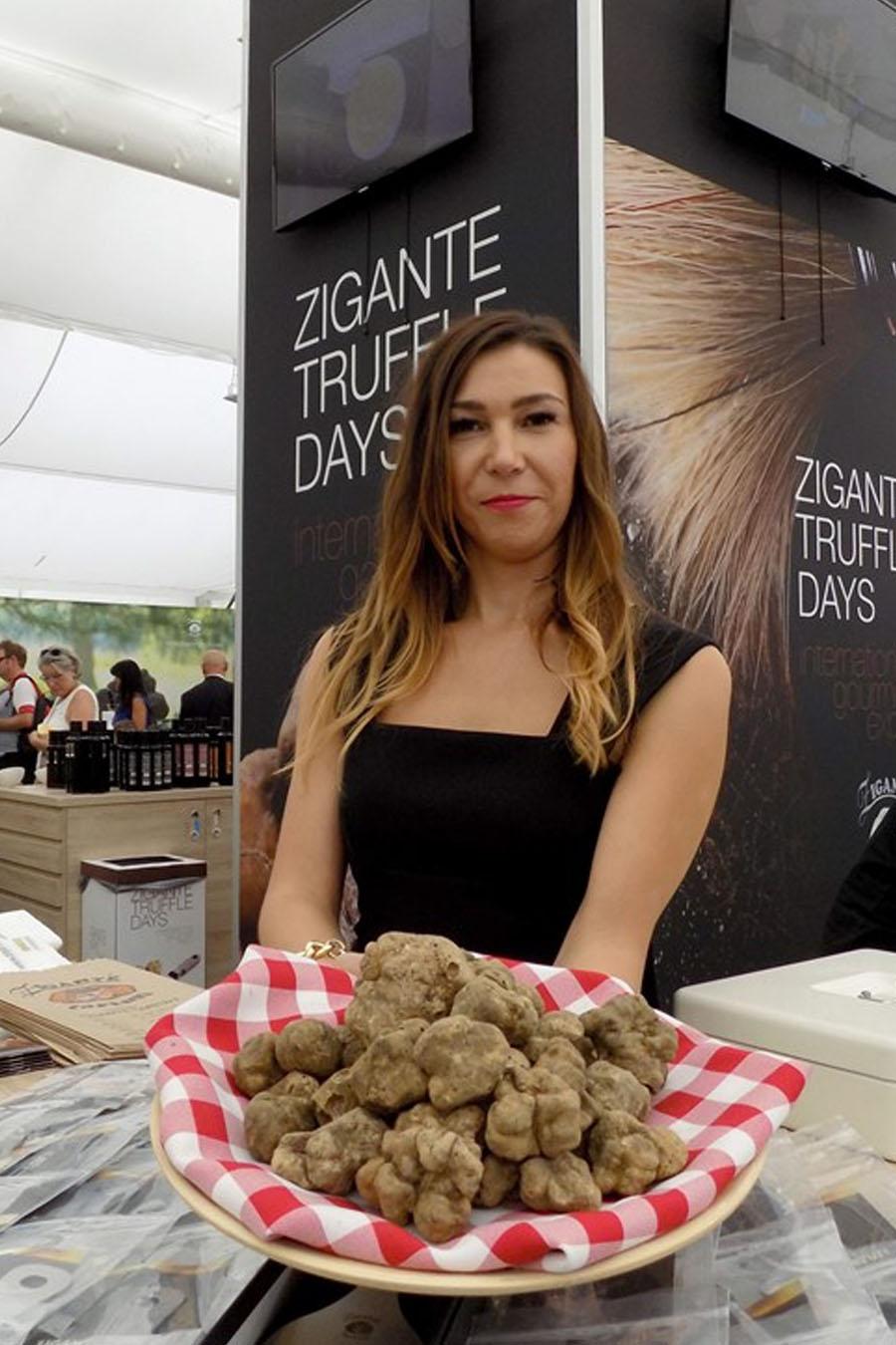 Zigante tartufi - sejem